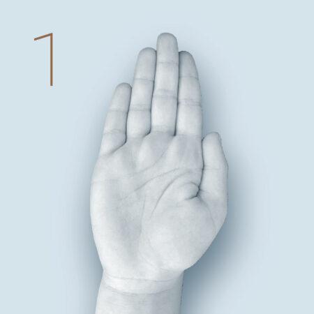 Finger wie Abb. durchstrecken