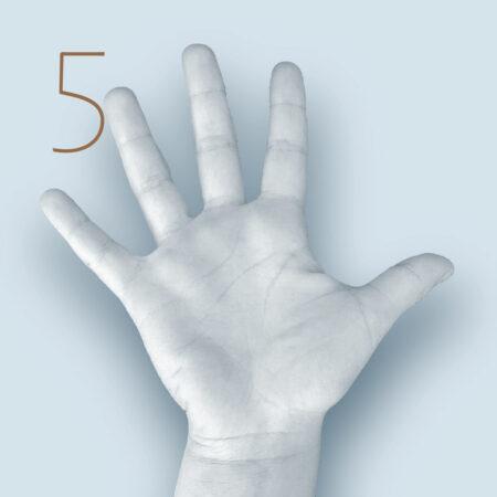 Finger wie Abb. spreizen